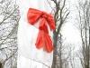 die-eiche-im-opfinger-wald-freiburg-opfingeneinweihung-21-01-2012-thomas-rees261