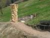 grieswurz-zauberweg-am-hasenhorn-todtnau-thomas-rees-641