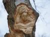 Lebensbaum 004