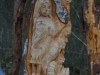 Lebensbaum 020