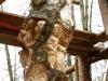 Lebensbaum 098