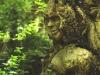 WaldMenschen, 2014, thomas rees 23
