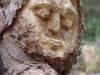 waldmenschen-thomas-rees-441