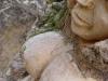 waldmenschen-thomas-rees-444