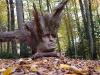 skulpturenpfad-waldmenschen-waldhaus-freiburg-thomas-rees263
