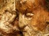 skulpturenpfad-waldmenschen-waldhaus-freiburg-thomas-rees267