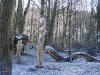 skulpturenwieseu260