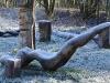 skulpturenwieseu261