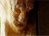 Mycelium, Novembergrau, thomas rees 50