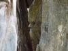 skulpturenpfad-waldmenschen-freiburg-thomas-rees-72