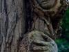 skulpturenpfad-waldmenschenwaldgesichter-thomas-rees-02