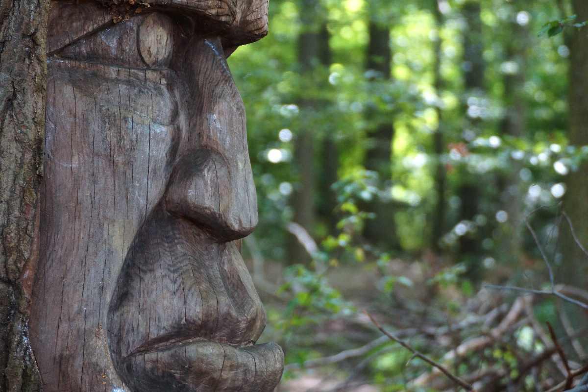 Skulpturenpfad WaldMenschen, Freiburg,holzkopf, thomas rees 03