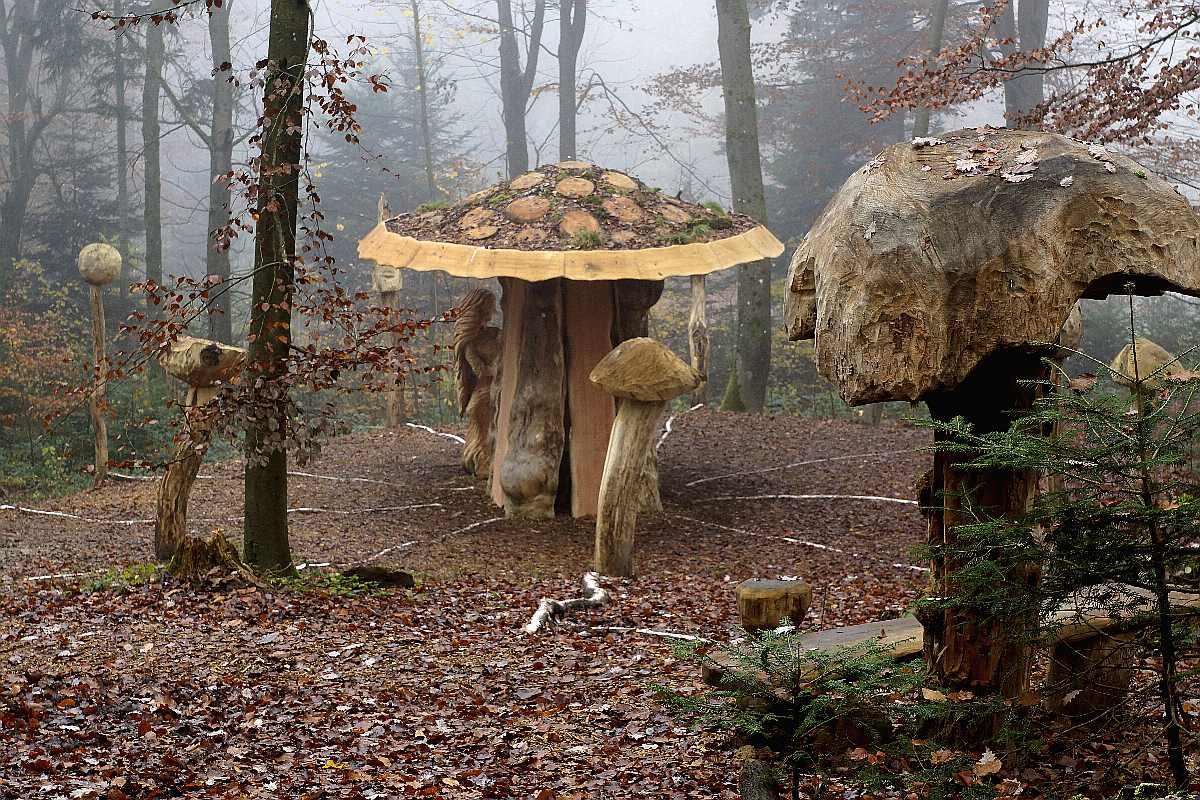 "Mycelium, ""Novembergrau"", thomas rees 13"