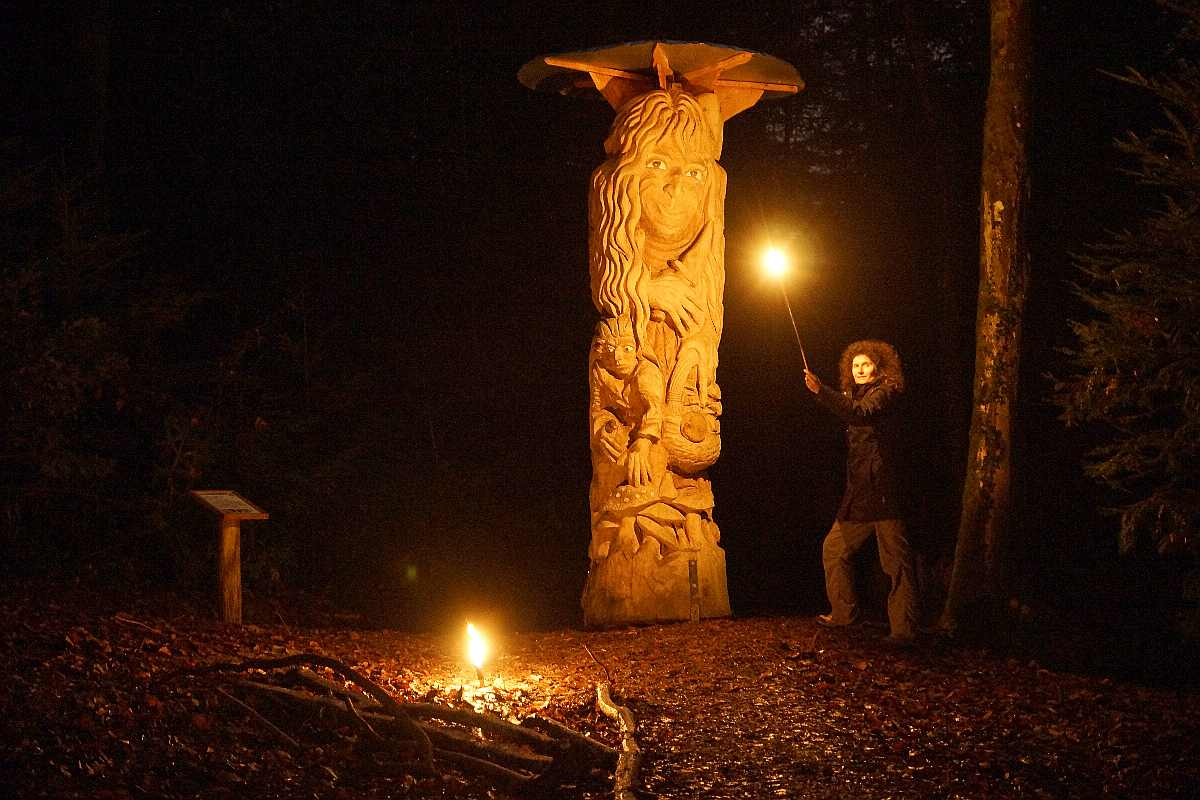 Mycelium,Weihnachten 2014, thomas rees 07