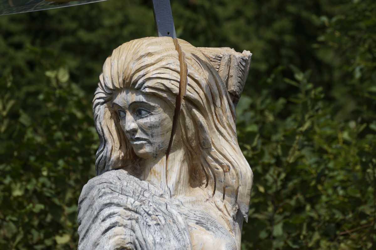 ergraute Artemis August 2015 (5)