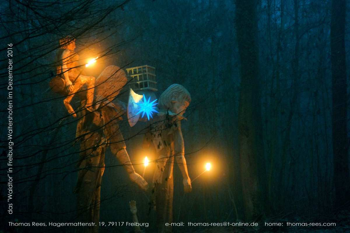 dezembernacht-das-waldtor-in-freiburg-waltershofen-thomas-rees-02