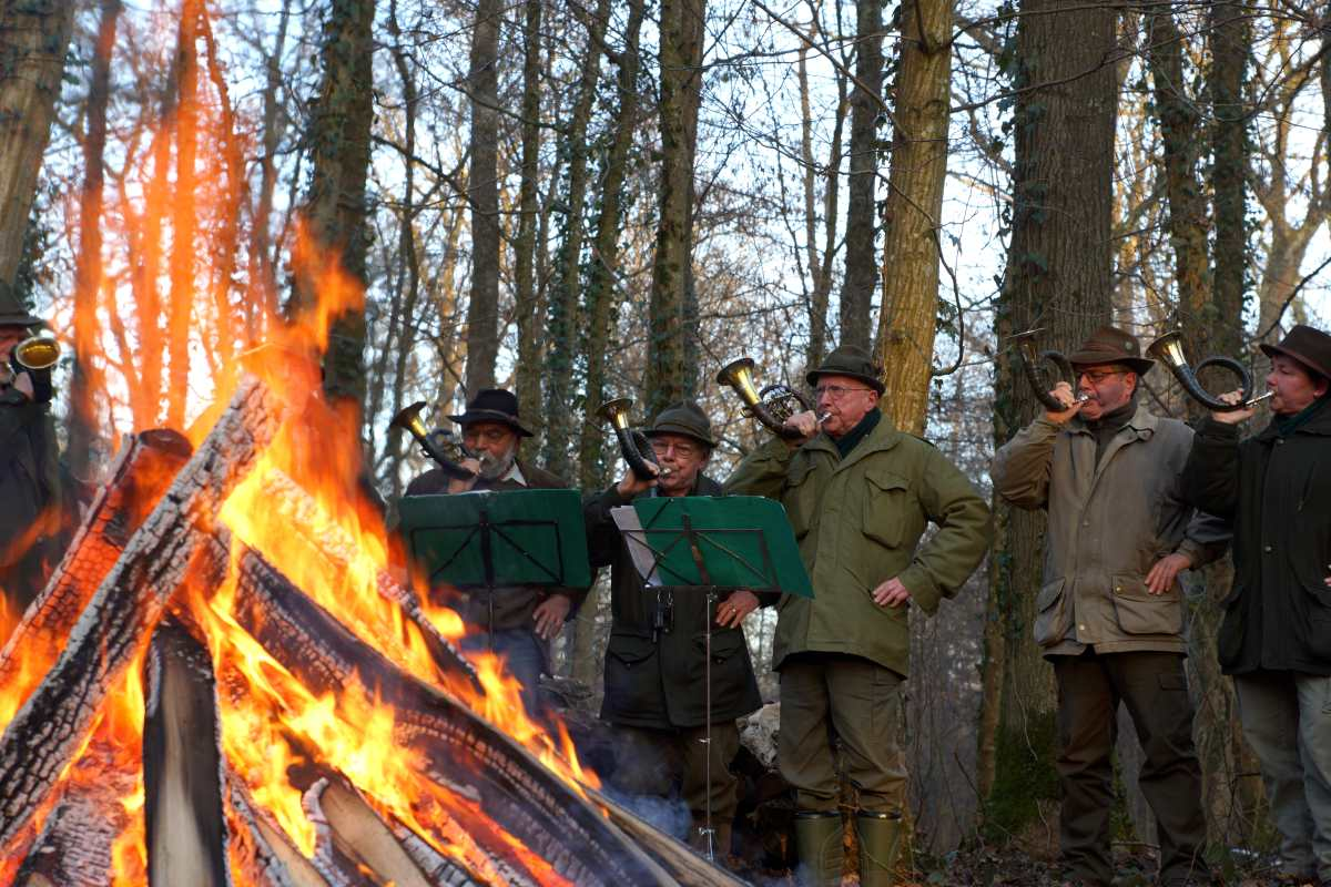 Waldtor, Holzversteigerungsfest, thomas rees 16